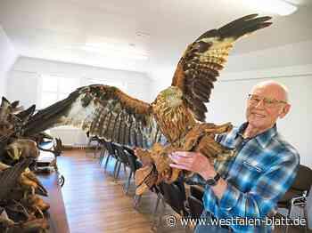 Starke Gemeinschaft besteht seit fünf Jahrzehnten in Steinheim – Naturschutz auf vielen Ebenen: Die Waldjugend zieht um - OWL - Westfalen-Blatt