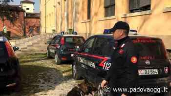 Conselve, arrestato spacciatore seriale - PadovaOggi