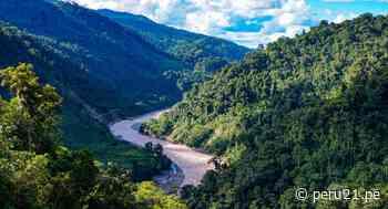 Huánuco: Codo de Pozuzo espera convertirse en Área de Conservación Regional | VIDEO - Diario Perú21