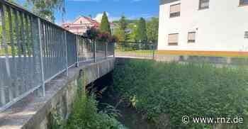 Neckarbischofsheim: Viele Brücken sind in keinem guten Zustand - Rhein-Neckar Zeitung
