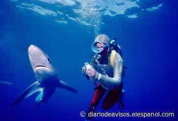 Buenavista acoge este sábado el estreno en España de 'Playing with sharks' - Diario de Avisos