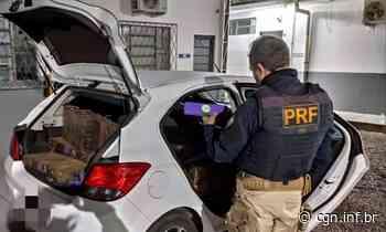 PRF prende traficante tentando se esconder em Motel de Assis Chateaubriand - CGN