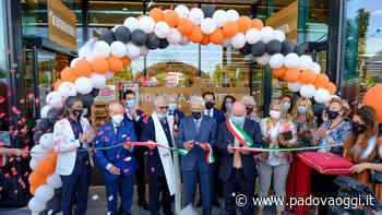 Inaugurato l'Alì di Saonara in via Giuseppe Ungaretti, 2 - PadovaOggi