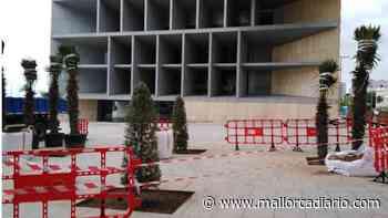 Cort planta 18 árboles en el entorno del Palau de Congressos - mallorcadiario.com