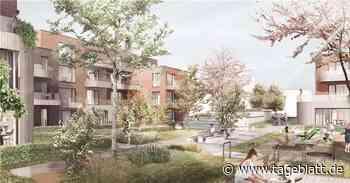 Neubaugebiet Giselbertstraße: Wo es in Buxtehude günstige Wohnungen gibt - Buxtehude - Tageblatt-online