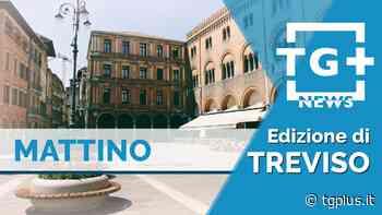 Spresiano, 80enne uccide la nuora e si spara – TG Plus NEWS Treviso - Tg Plus