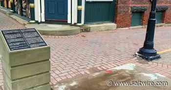 Charlottetown removes John A. Macdonald statue - SaltWire Network