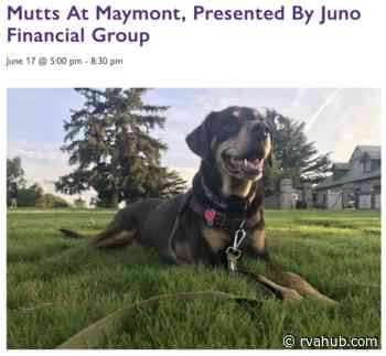 Tonight's Mutts at Maymont Postponed Due to Possibility of Raining Cats and Dogs - rvahub.com