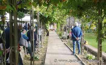 Festa di San Vivaldo nel magnifico convento - Qui News Empolese