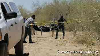 Encuentran cuerpo descompuesto en Caborca; estaba encobijado y tenía impactos de bala - TRIBUNA