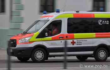Frau von Hund gebissen und schwer verletzt - Passauer Neue Presse