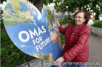 Neue Initiative in Gerlingen - Im Strohgäu gibt es nun die Omas for Future - Stuttgarter Nachrichten