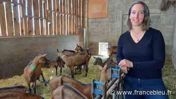 Entrez dans la Chèvrerie de Chatreuse à Voiron - France Bleu