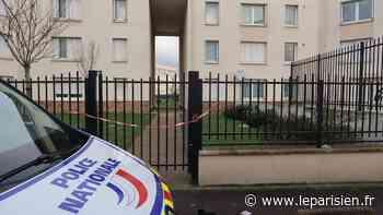 Limay : prostituée pendant trois jours, elle réussit à s'enfuir de l'appartement de l'horreur - Le Parisien