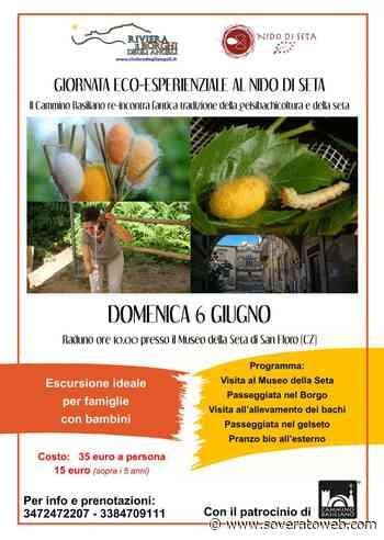 Il Cammino Basiliano re-incontra l'antica tradizione della gelsibachicoltura e della seta - Soverato Web