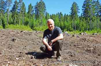 Forst - Waldsaat geht auf – die Rechnung auch? - inSüdthüringen