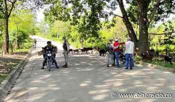 Policía e Infantería aumentan pie de fuerza y operativos en Chalán, Sucre - EL HERALDO