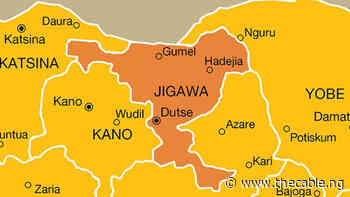 Jigawa to spend N1bn on LG poll - TheCable