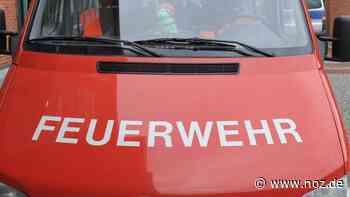 Beim Abflämmen von Unkraut: Mann in Werlte setzt Hecke in Brand - noz.de - Neue Osnabrücker Zeitung