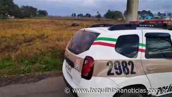 Polícia Militar registra duas saídas de pista em Forquilhinha - Forquilhinha Notícias