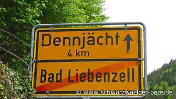 Widerstand in Bad Liebenzell - Gemeinderat ist gegen dreispurigen Ausbau der B 463 im Nagoldtal - Schwarzwälder Bote