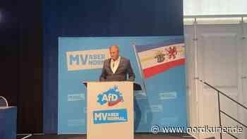 Parteitag: AfD kürt Leif-Erik Holm zum Spitzenkandidaten | Nordkurier.de - Nordkurier