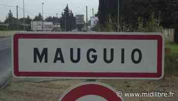 Départementales dans l'Hérault : sur le canton de Mauguio, quatre binômes dans un mouchoir de poche - Midi Libre