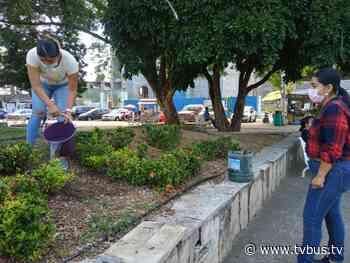 Por Día Mundial del Medio Ambiente, en Tuxtepec planean la reforestación de parques - TV BUS Canal de comunicación urbana