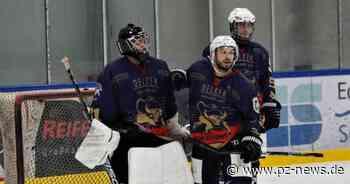 Gute Nachricht für die Bisons: Pforzheimer Eishockey-Team kommt in Bad Liebenzell unter - Sport - Pforzheimer Zeitung