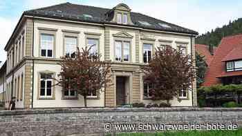 Mehr Corona-Tests - Ab 12. Juni gibt's täglich Testmöglichkeiten in Schiltach und Schenkenzell - Schwarzwälder Bote
