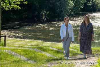 Ruimte voor natuur, film, foodtrucks en rust in Brilschanspark Berchem - Het Nieuwsblad