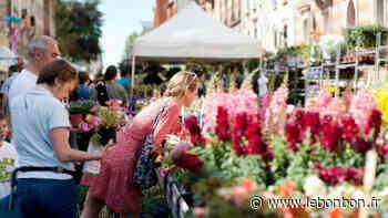 Ce week-end, découvrez le festival de l'agriculture urbaine à Montrouge - Le Bonbon