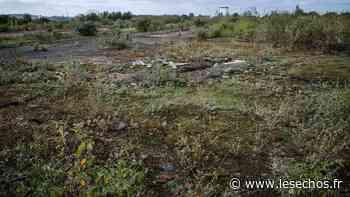Louveciennes : un nouveau projet pour les terrains Villevert - Les Échos