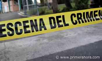 Investigan asesinato en residencial de Manatí - Primera Hora