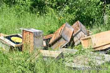 Bienenstock verwüstet - Wabenkisten gestohlen - Langenfeld - Super Tipp