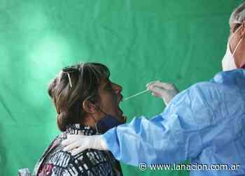 Coronavirus en Argentina: casos en Valle Fértil, San Juan al 4 de junio - LA NACION