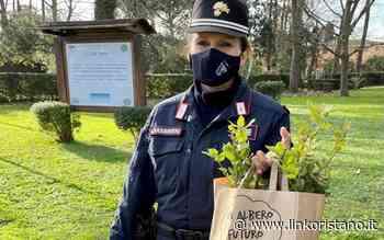 A Santa Giusta arrivano i carabinieri da Roma per piantare 10 alberi - LinkOristano.it - Linkoristano.it