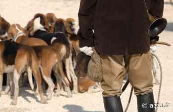 Interdiction de chasse à courre à Pont-Sainte-Maxence : les chasseurs n'abdiquent pas - actu.fr