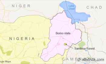 Nigeria: Adamawa, Borno, Yobe Ranked Nigeria's Most Dangerous States - AllAfrica - Top Africa News