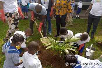 PHOTOS: Acting US consul general joins pupils in planting tree to mark World Environmental Day - TheCable