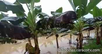 Más de 3 mil familias de Acandí y Unguía, Chocó, damnificadas por el invierno - Noticias Caracol