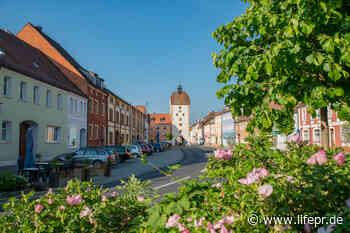 Der Hammergutweg bei Vilseck, Amberg-Sulzbacher Land, Pressemitteilung - lifePR - lifePR