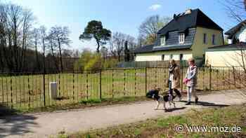 Gerüchte um die Bundeskanzlerin: Zieht Angela Merkel auf ein Grundstück in Wandlitz? Das sagt Regierungssprecher Steffen Seibert dazu - moz.de