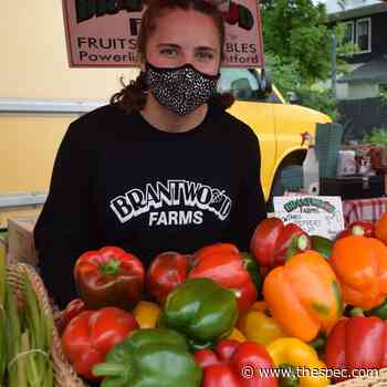 Ancaster Farmers Market is back | TheSpec.com - TheSpec.com