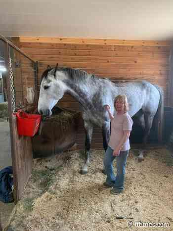 Celebrity horse makes a local stop – Fort Frances Times - Fort Frances Times