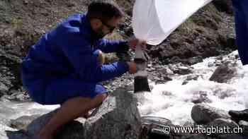Projekt - Verschmutzte Alpen: Forschungsteam sammelt Mikroplastik am Mont Blanc - St.Galler Tagblatt