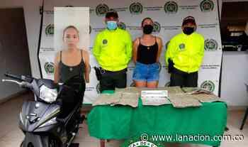 Transportaba alijo de marihuana en Campoalegre • La Nación - La Nación.com.co