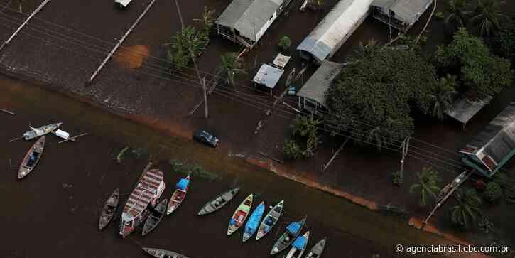Rio Negro sobe mais um centímetro e supera marca histórica - Agência Brasil