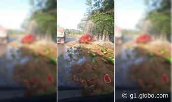 Acidente com caminhão carregado com melancia mata criança na Serra de São Vicente (MT) - G1