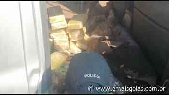 PRF apreende veículo carregado com 60 quilos de cocaína em Jataí - Mais Goiás